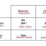 Показни придавки на француски